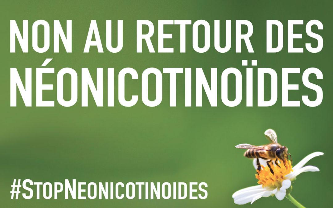 Stop néonicotinoïdes