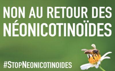 Non au retour des Néonicotinoïdes !